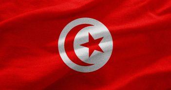tunesische flagge wehend im wind